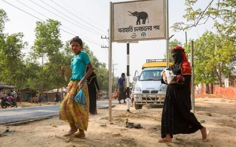 'Tusk force' set up to protect refugees and elephants in Bangladesh