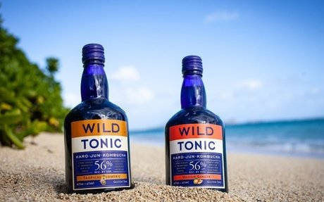 WILD TONIC® Announces New 7.6% ABV, Backwoods Bliss, Coming Soon - Food & Beverage Maga...