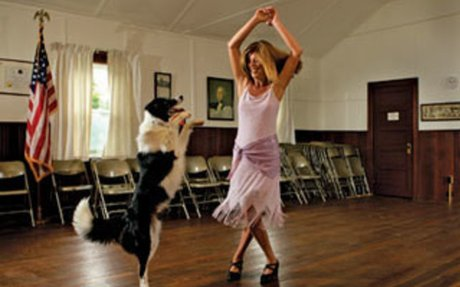 Canine Freestyle: Teaching Your Dog to Dance