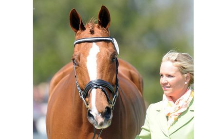 Eventing: Consensus Dies On Cross-Country At Ocala Winter I Horse Trials