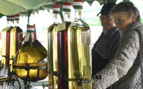 Alkoholstratégia nincs, évi nyolcmillió liter pálinka van