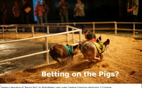 Social Security Claiming and Pig Races