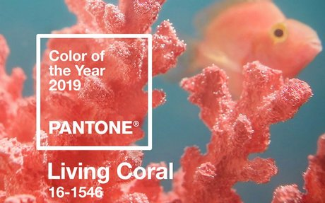 DESIGN // Pantone's Color of The Year is Living Coral