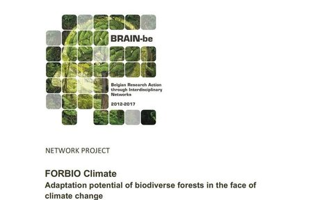 FORBIO Climate: Adaptation potential of biodiverse forests in the face of climate change