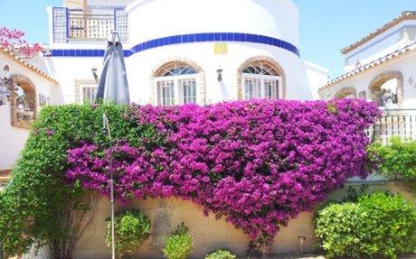 Villamartin – villa med 3 soverom og høy standard