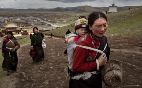 Mutations may reveal how Tibetans can live on world's highest plateau