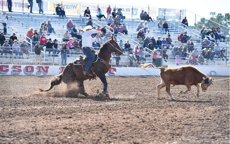 AQHA: AQHA-PRCA Horses of the Year