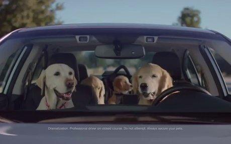 Subaru Dog Tested | Subaru Commercial | Phone Navigation - You...