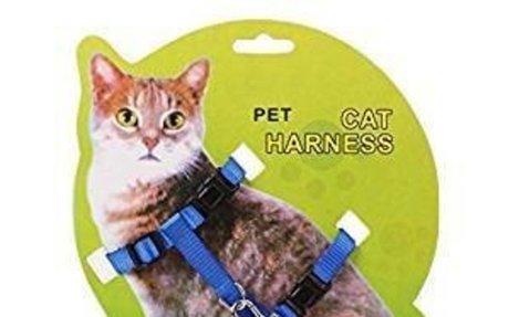 Amazon.com : Patgoal Cat Harness And Leash Adjustable Pet Kitten Traction Harness Belt : P