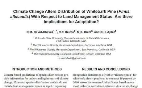 Climate change alters distribution of whitebark pine with respect to land management