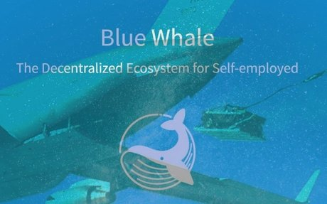 🔥Blue Whale Foundation Airdrop📦