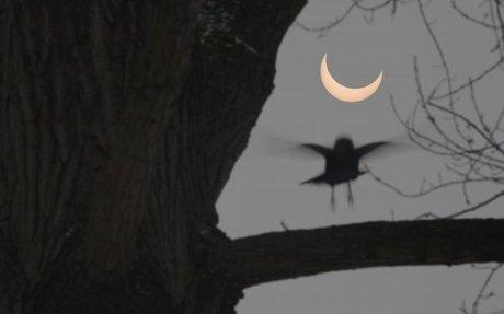 3) How Often Do Solar Eclipses Happen?