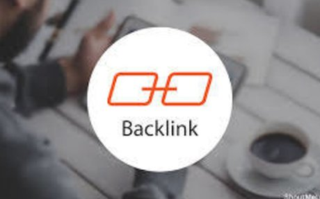 100 Professional SEO Backlinks & PBN Links for $100 - SEOClerks
