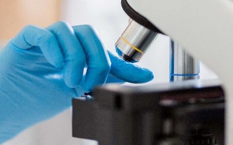 Precision medicine institute launches call for research applications