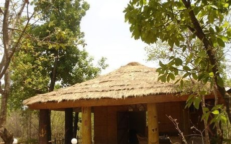 Pench National Park Online Booking | Royal Jungle Retreat
