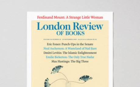 LRB · Michael Wood · At the Movies