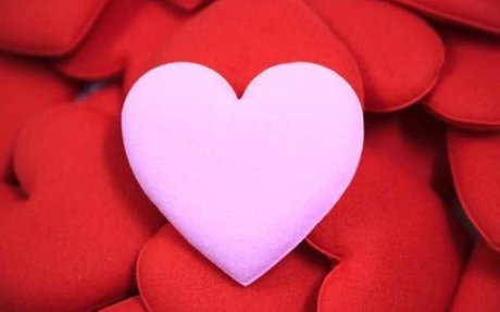 What Is Love? Here's The Science…