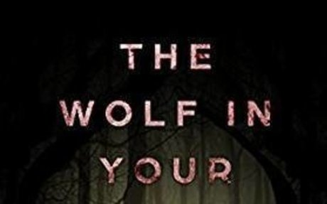 The Wolf in Your Bed: How to use writing to recover from emotional abuse - Kindle edition