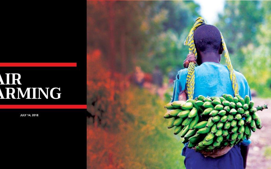 Fair Farming | The St. Lucia STAR