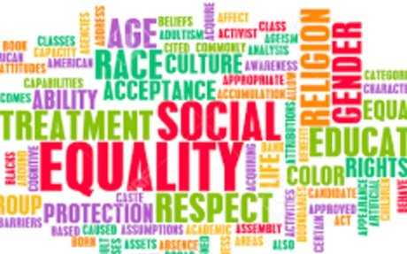 Social Equality in the Number of Choice Options Is Represented in the Ventromedial Prefron