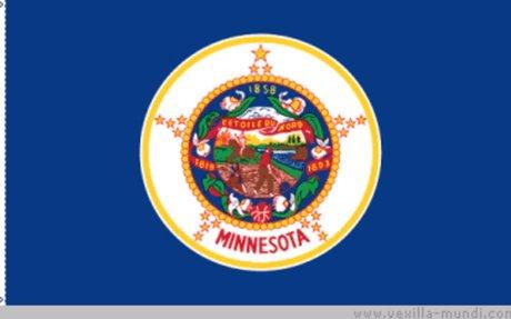 Minnesota Land Surveyors (MSPS)