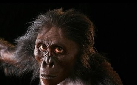 Becoming Human - Evolution from APE To MAN - Documentary 2017