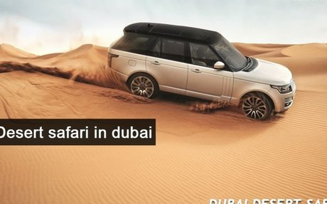 Evening Desert Safari in Dubai | an Unforgettable Experience