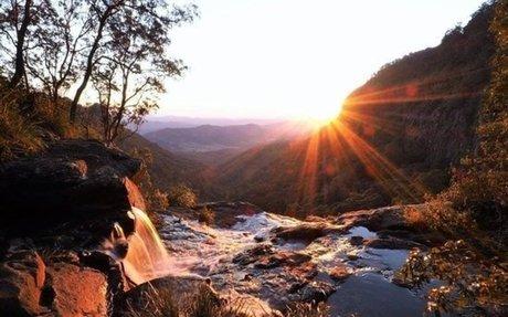 Lamington National Park, Rainforest Australia