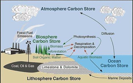 Rank 1: Carbon storage in ice, ocean and biosphere