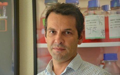 CIÊNCIA - Investigadores da UC descobrem potencial marcador para Hipertensão Arterial Pulm