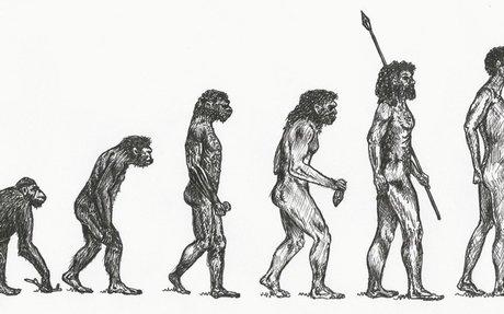 The Evolution of Homo Sapiens