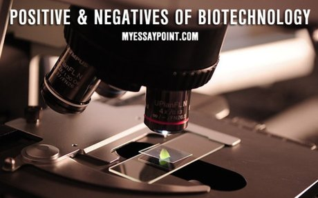 Positive and negative effects of biotechnology | My Essay Point