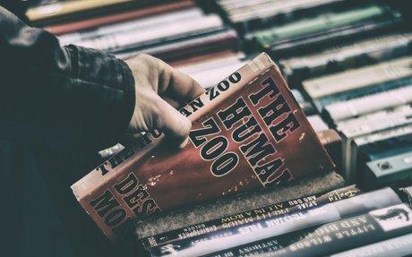 Niemand liest mehr E-Books! Ein Blick hinter die Schlagzeile