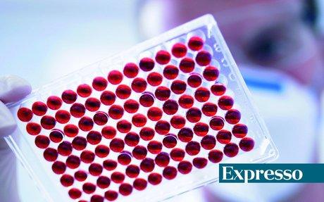 Mais de 50 mil infetados estão por identificar