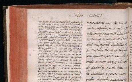 Historia general de las cosas de Nueva España por el fray Bernardino de Sahagún: el Códice