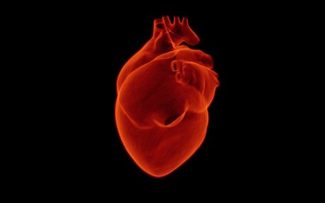 Evaluation of 1-minute Heart rate variability during deep breathing