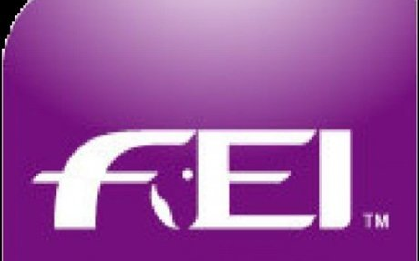 Governance: FEI Launches FEI Campus