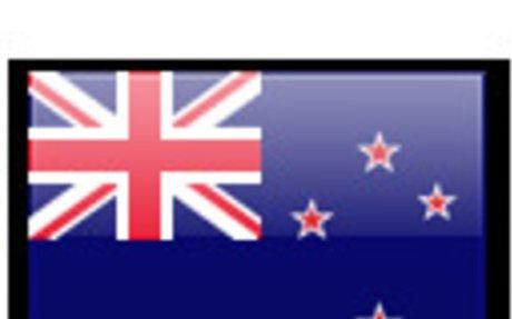 New Zealand Land Surveyors