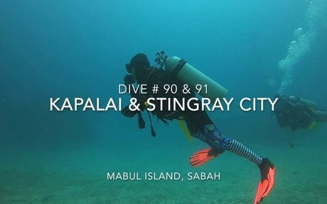 Dive # 90 & 91 : Kapalai & Stingray City - Mabul Island, Sabah