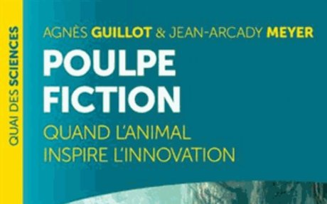 Poulpe fiction : Quand l'animal inspire l'innovation - Université de Bordeaux - Documentat