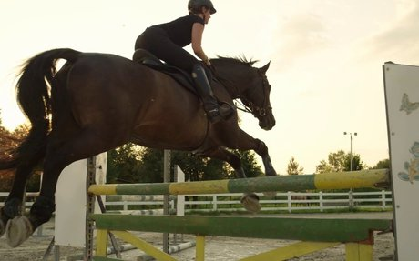 Time lapse Horse and rider jumping over a fence
