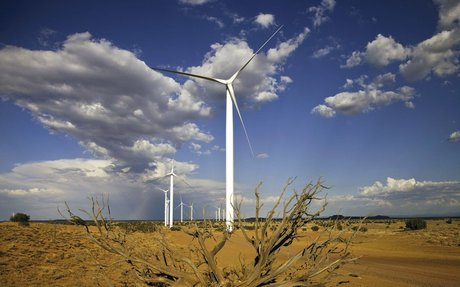 Wind power is beating the pants off of other renewables.