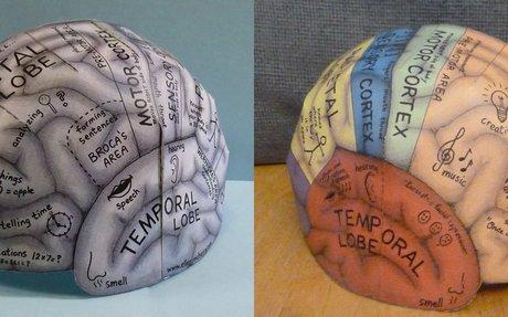 Brain Hemisphere Hat