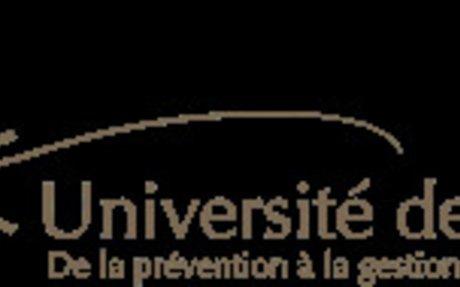 Management émotionnel (1) : problématique | Université de Paix asbl