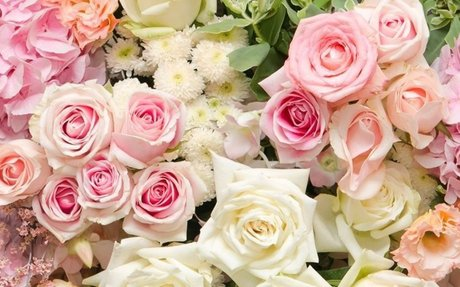 Best Florist in San Marino  Flower Delivery San Marino