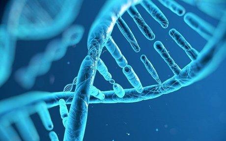 Helix Health Science | Journals | Life Sciences