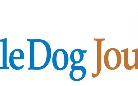 Try Treibball! | Whole Dog Journal