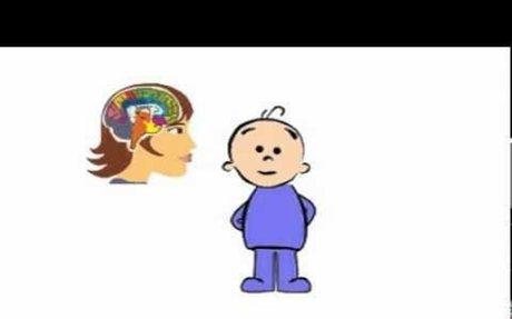 Fundi y el Cerebro (5 años) - Vídeo 1 - El cerebro