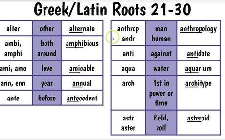 Greek & Latin Roots 21 30