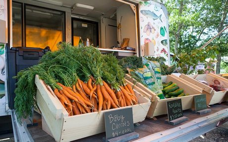 Faces of Food Insecurity on Martha's Vineyard — An Introduction